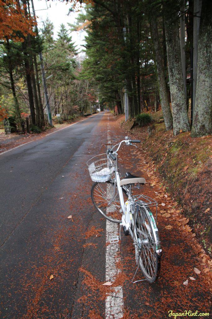 Karuizawa bicycle maple 輕井澤一日遊