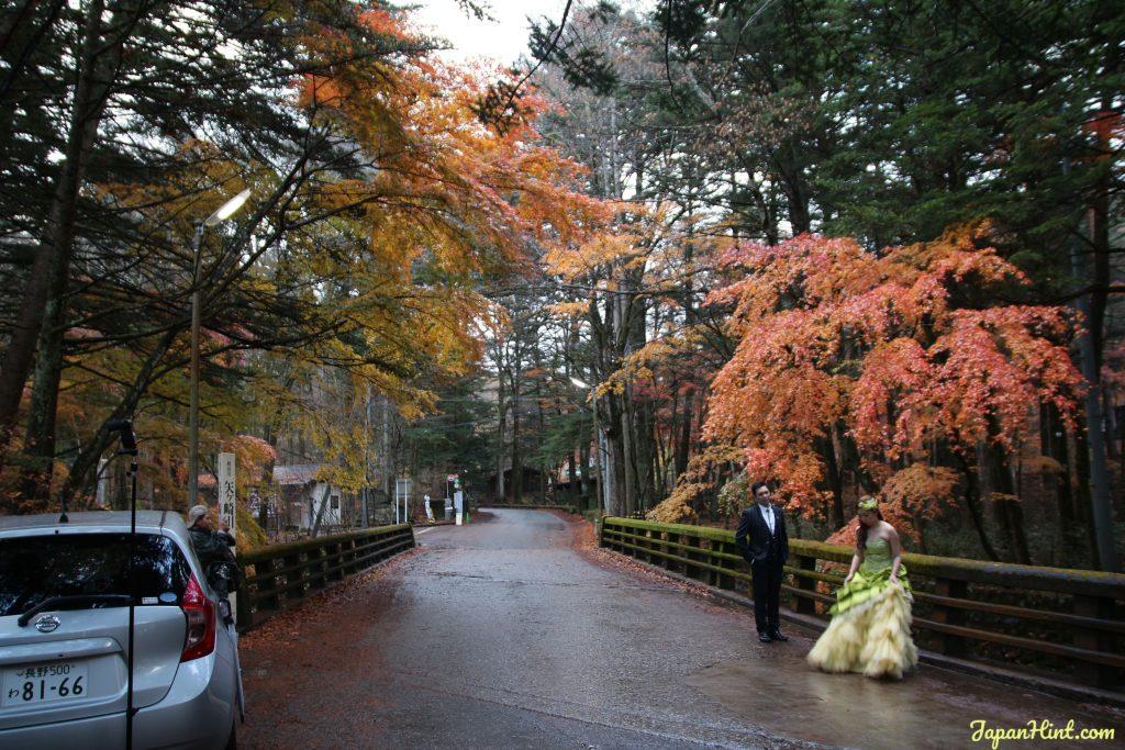 Karuizawa maple wedding